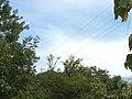 Parque Estadual Lapa Grande - Montes Claros MG - panoramio.jpg
