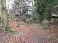 Path Through Anston Stones Wood - geograph.org.uk - 128698.jpg