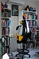 Penguin in your bookcases.JPG