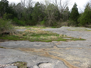 Cedar glade - Cedar glade in the Pennyroyal Plain, Simpson County, Kentucky.