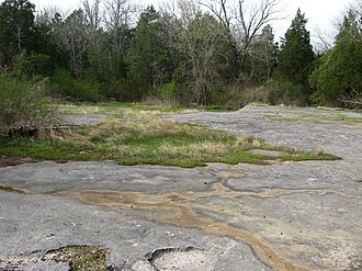 Calcareous glade - Limestone glade in the Pennyroyal Plain, Simpson County, Kentucky.