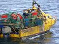 Pesca de centolla en la Bahía Ushuaia 35.JPG