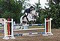 Pferdesport in Sachsen 2H1A7816WI.jpg