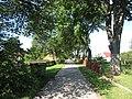 Pirčiupiai 65446, Lithuania - panoramio (15).jpg