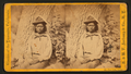 Piute Indian Captain, by E. & H.T. Anthony (Firm).png