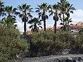 Playa de la Américas, Santa Cruz de Tenerife, Spain - panoramio.jpg