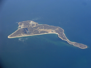 Plum Island (New York)