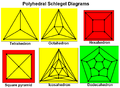 Polyhedral schlegel diagrams.png