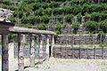 Pompeya. Villa de los Misterios. 05.JPG