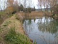 Pond near Netherclay - geograph.org.uk - 135643.jpg