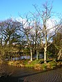 Pond near Toll Farm - geograph.org.uk - 642866.jpg