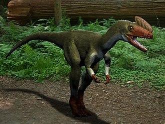 1926 in paleontology - Proceratosaurus