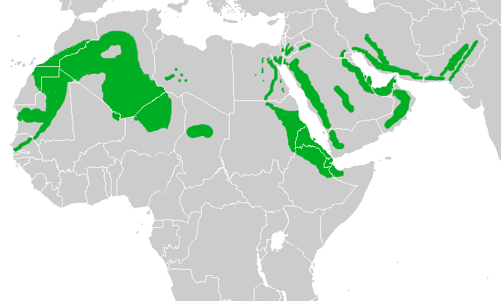 Map showing the breeding areas in Africa and the Middle East