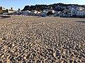 Public Beach (64074619).jpeg