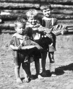 Queensland State Archives 4313 Children on tobacco farm at Beerburrum 1933