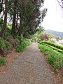 Quinta do Monte, Funchal, Madeira - IMG 6395.jpg