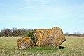 Rahn Estonia KLO1000558.jpg