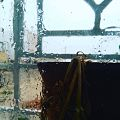 Rainy day in tunisia.jpg