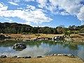 Rakusan-en Konmei Pond 1.jpg
