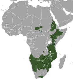 Range map of the Greater Kudu.png