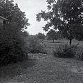Ray farm 1940s Ashland Alabama 015.jpg