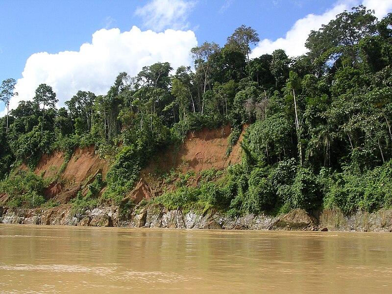 File:Rio Madre de Dios, Peru.JPG