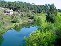 Rio Mondego em Caldas da Felgueira (90785496).jpg
