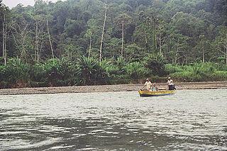 Teribe River river in Panama