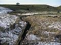 River Beal valley - geograph.org.uk - 1721174.jpg