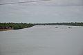 River Hogal - Sonakhali-Basanti - South 24 Parganas 2016-07-10 5042.JPG