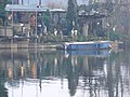 River Trent - geograph.org.uk - 1100097.jpg