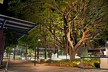 Townsville - Wikipedia