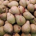 Rocha Pears 2017 A1.jpg