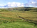 Rough grazing and farm track - geograph.org.uk - 543395.jpg