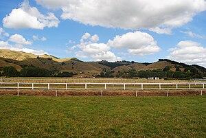 Paeroa - A view of the rural regions surrounding Paeroa