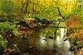 Ruth Zimmerman Natural Area (Autumn Visit) (3) (15328131280).jpg