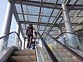 SZ 深圳灣口岸 Shenzhen Bay Port bus terminus to footbridge January 2020 SSG 09.jpg