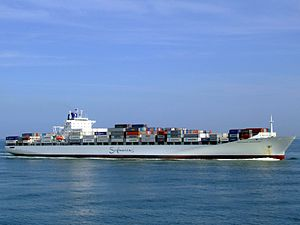 Safmarine Nokwanda p10 approaching Port of Rotterdam, Holland 20-May-2007.jpg