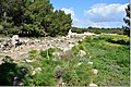 Salamis 403DSC 0615.jpg