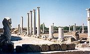 Salamis, Cyprus, outside the city of Amochostos.