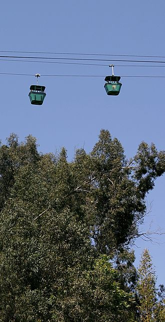 San Diego Zoo - Two Skyfari gondolas
