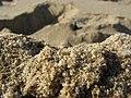 Sand-SB-01.01.2007.jpg