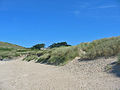 Sand dunes. Beach north of Rock - geograph.org.uk - 60625.jpg