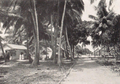 Scenery in Jaluit, Marshall Islands (from a book published in 1932).png