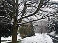 Schlangenbad, Germany. - panoramio.jpg