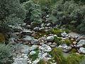 Serra da Estrela (22536518091).jpg