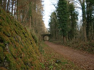 Severn and Wye Railway - A section of the Severn and Wye Railway, now in use as a cycle and footpath.
