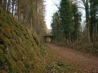 Severn and Wye Railway