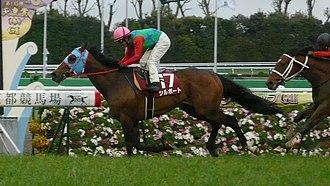 Yomiuri Milers Cup - 2012 Milers Cup