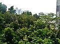Singapore Southern Ridges Hilltop Walk 13.jpg